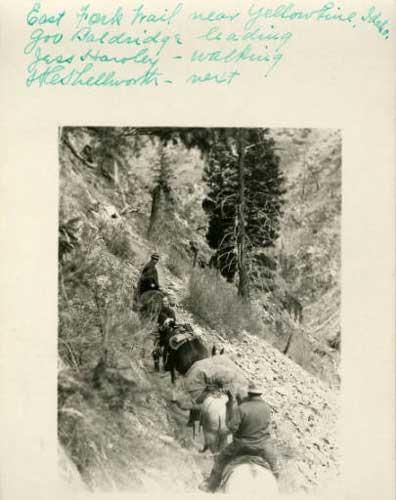 1928east-fork-trail-2