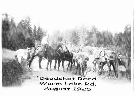 ReedDeadshotPackstring-a