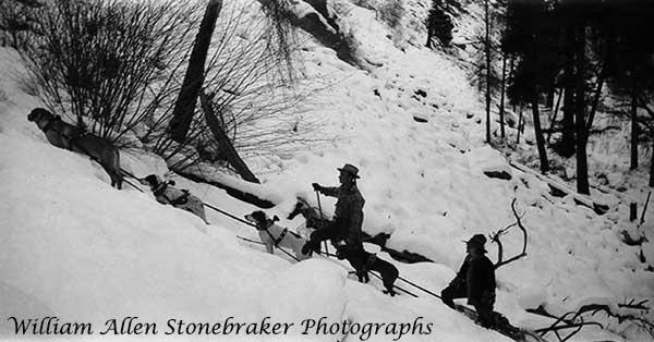 1929DogsledElkSummitStonebraker-a