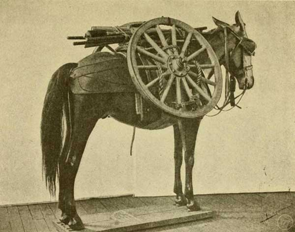 HowitzeronMule2-a