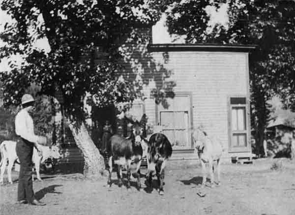 1903Lillburn-a