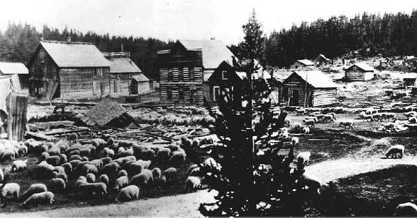 1926NewFlorence-a