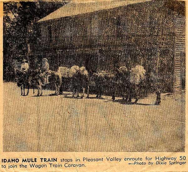 Idaho-Mule-Train-7-a