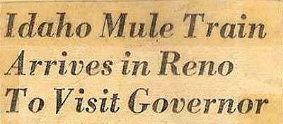 Mule-Train-2-a-headline