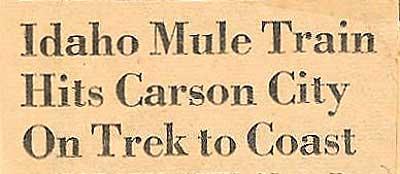 Mule-Train-4-b-headline