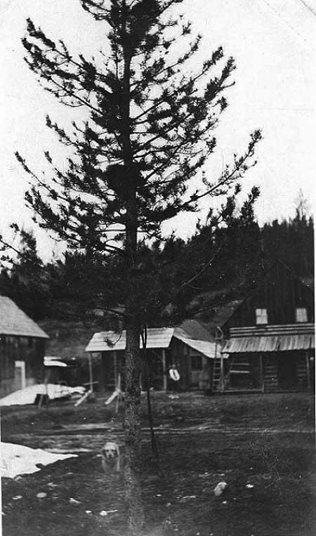 1902RooseveltStonebraker4-a