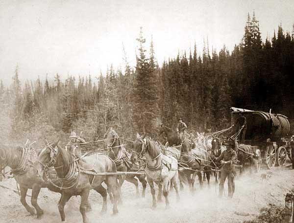 Overland_Trail_horse_team-a