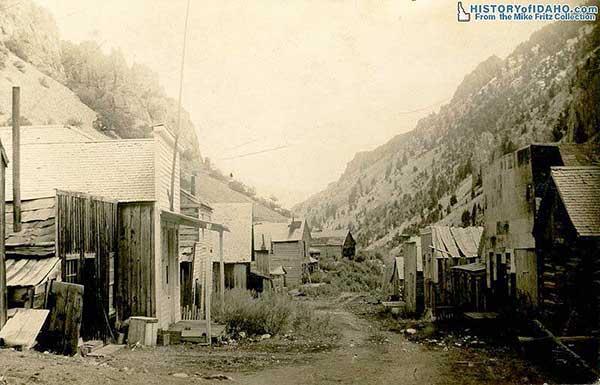 BayHorse1914Fritz-a